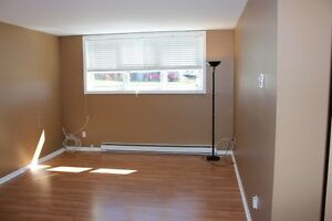 Affordable 2 Bedroom Condo- Vendor will pay 1st Years Condo Fees St. John's Newfoundland image 2