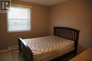 Room for rent near Avalon mall