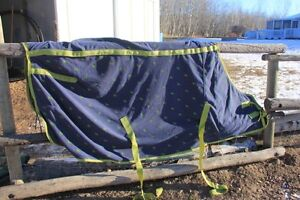 Shedrow fleece sheet
