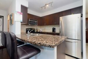 Open Concept 1 Bedroom Suite Features A Large Modern Kitchen