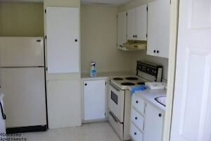 Dog friendly- Salmon River- 3 bed Mobile