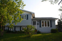 Family home in Downtown Moncton!