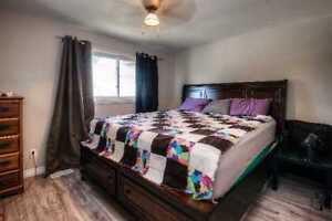 Peace & Quiet at It's Finest! Updated 2 Bed Rental in Cambridge