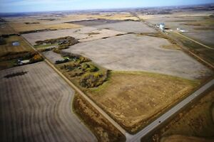 116 Acres Near Camrose Edmonton Edmonton Area image 9
