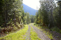 163 acres in Beautiful Salmo.  Serene, private, amazing views.