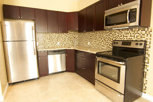 Large Luxury 2 bed 1 bath available Oct 1st in ELMIRA