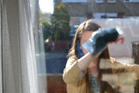 >>>Stellar window washing offered at cheap rates!