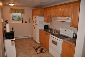 Bright spacious above ground 2 bedroom apt for rent
