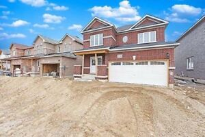 Brand New Detached Home In Shelburne