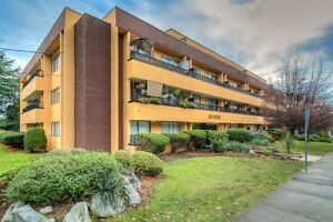 1 Bdrm available at 908 Sixth Avenue, New Westminster