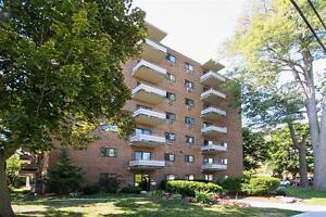 Downtown AND Surrounded by Nature! Spacious-Upgraded! London Ontario image 5