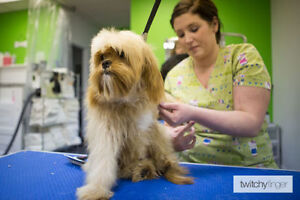 Dog Grooming at Fetch Haus - Red Deer's LOCAL Pet Store.