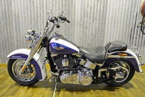 2010 Harley-Davidson FLSTN Softail Deluxe 1600CC Cruiser 103cc
