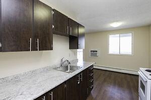 1 Bdrm available at 4730-4760 Pasqua Street, Regina Regina Regina Area image 7