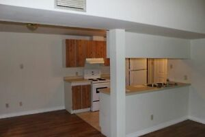 1 Bedroom loft apartment - 300 Dufferin Street