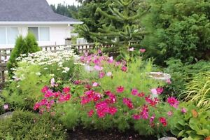 BEAUTIFUL FURNISHED GARDEN LEVEL SUITE AVAILABLE DEC 1 to 31st! Comox / Courtenay / Cumberland Comox Valley Area image 7