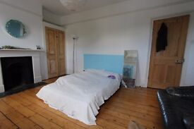 1/2/3/5/6mth+ BEAUTIFUL vry lge dbl rm LOVELY hse 2 min Stoke Newington Church St FANTASTIC 80ft gdn