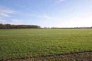 Looking for farm land to rent!