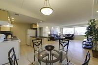 Downtown Luxury! Renovated-Modern-All-Inclusive-1BR!