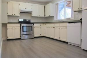 Bright 3-bedroom suite in Central Mission