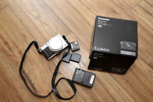 Lumix DMC-LX100  camera