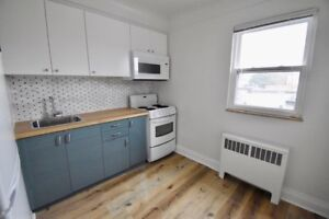 Renovated 1-bedroom apartment in boutique Westdale building