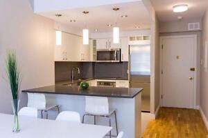 Full Reno 2 Bed - Washer/Dryer - Downtown - Gym/Terrace/Doorman