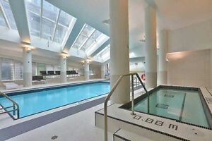 Beautiful Studo Condo In An Amazing Location, Steps To Union Stn