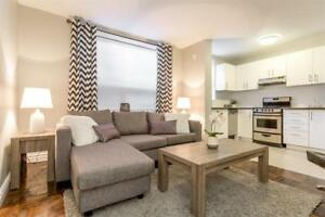 Exceptional Bachelor For Rent   Forest Hill   Newly Renovated   Call Today