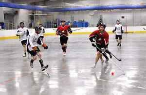 Wanted: 4 or 5 Sunday AM Ball Hockey Players Southside Drop In