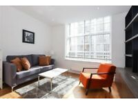 Studio flat in The Printworks, 133 Clapham Road