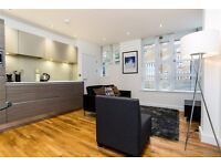 1 bedroom flat in Limekiln Wharf off Narrow Street, 5 mins to DLR, Furnished