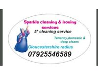 ProfessionalCleaning&ironing service