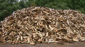 SEMI DRY FIREWOOD - 8FT LENGHTS OR CUT AND SPLIT
