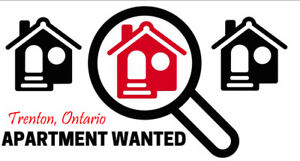 Bachelor/Studio Apartment wanted for Single Professional
