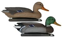 NEW Pro Lite Mallard Decoys - Mixed Dozen