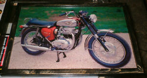 BSA Motorcycle mounted picture - 1960's -2 diff