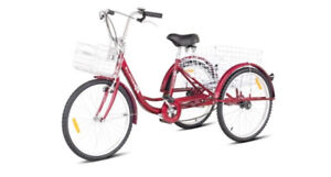 """Brand New RED 24"""" Adult Tricycle"""