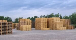 ISPM15 HT Wood Pallets Pallet Skids Crate New Recycled Crates