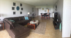 CONDO À LOUER / FOR RENT PALM-AIRE (POMPANO BEACH)