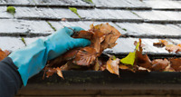 Eavestrouph cleaning Service and all of your exterior reno needs