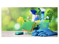 Domestic cleaning - Make your house sparkle