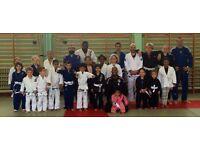 Free Taster Children's Martial Arts Classes
