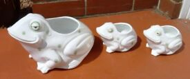 Set of 3 Frog China planters
