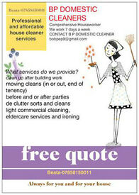 house cleaner domestic cleaning helper
