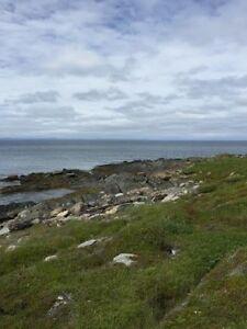 New Price! Large Oceanfront Lot in Heart's Delight! $39,900 St. John's Newfoundland image 5