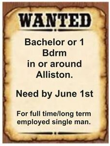 1 bdrm or bachelor Apartment in Alliston area by June 1st