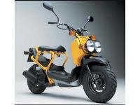 WANTED - Honda Zoomer