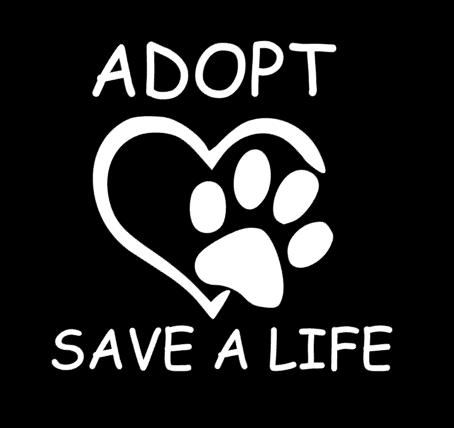 Adopt Save A Life. Cat Pet Dog Car decal / sticker
