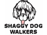 SHAGGY DOG WALKERS = Dog Walking - Let outs - Holiday Care - Personal service guaranteed